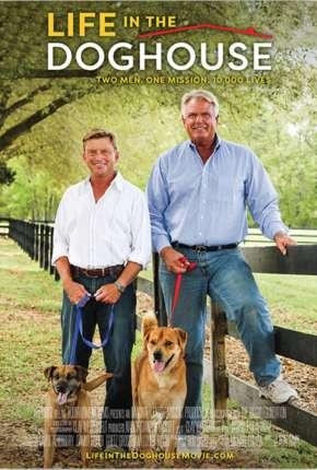 A Casa é Dos Cachorros - Legendado