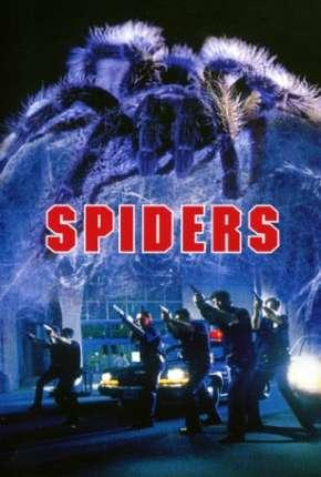 Aranhas - Spiders