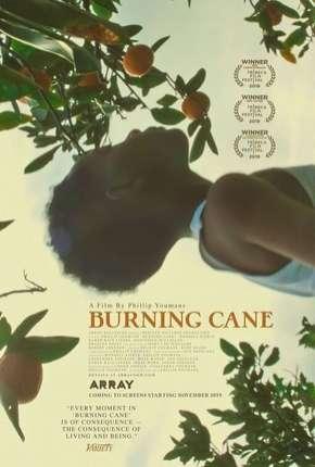 Burning Cane - Legendado
