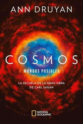 Cosmos - Mundos Possíveis - 1ª Temporada