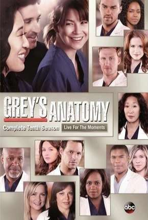 Greys Anatomy - 10ª Temporada - Completa