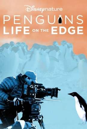 Pinguins - Vida ao Extremo