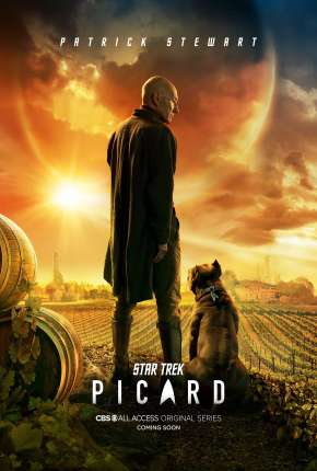 Star Trek - Picard - 1ª Temporada via Torrent