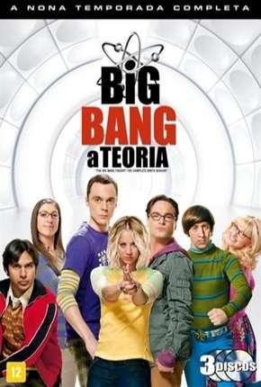 The Big Bang Theory (Big Bang - A Teoria) 9ª Temporada