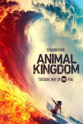 Animal Kingdom - 5ª Temporada Legendada via Torrent