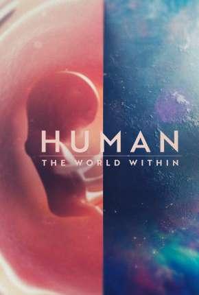 Corpo Humano - Nosso Mundo Interior - 1ª Temporada Completa