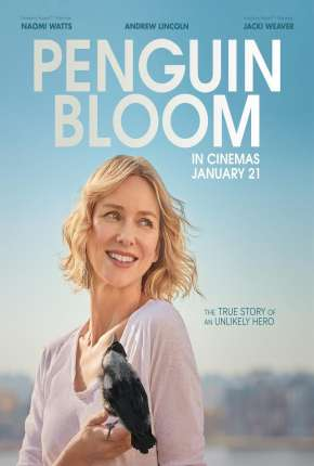 Filme Penguin Bloom - CAM - Legendado Download