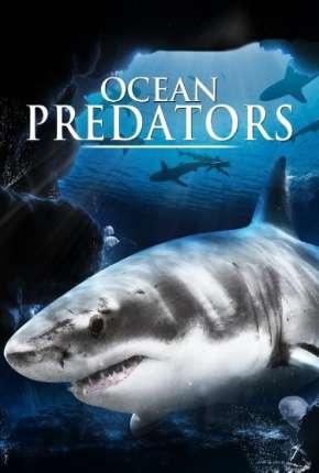 Predadores Perigosos - Os Mais Temidos Dos Oceanos - Ocean Predators