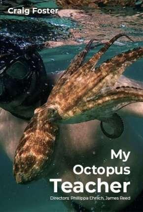 Professor Polvo - Legendado