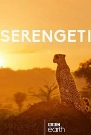 Capa Serengeti - 2ª Temporada Completa Legendada
